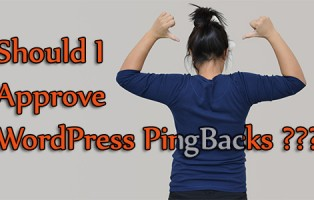 Should I Approve WordPress PingBacks